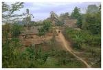 bambusowe chatki wNamo