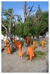 mnisi-drwale (Luang Prabang)