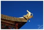 rzygacz w klasztorzeDongzhulin